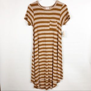 LulaRoe | XXS cream & tan stripe Carly dress NWT